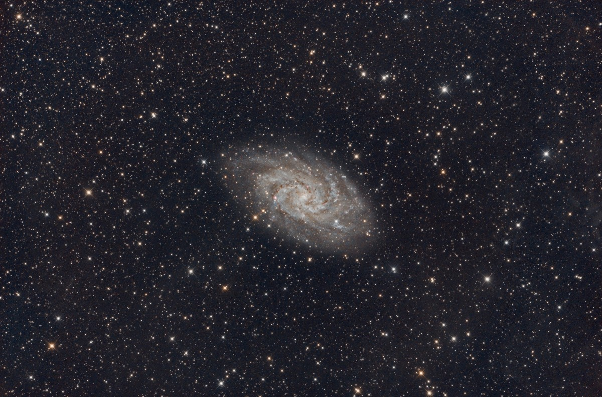 M33 The Triangulum Pinwheel Galaxy