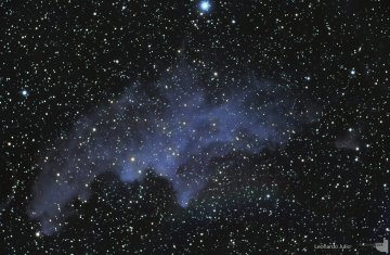 IC 2118 Witch Head Nebula