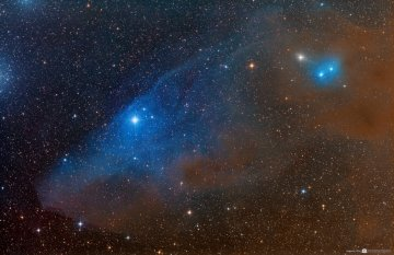 IC 4592 Horse Head Shaped Reflection Nebula